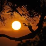 Atrakcje Kotliny Kłodzkiej. Międzygórze