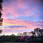 Mobilna forografia – jesienny zachód nad lasem