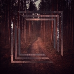 Mobilna fotografia – magical portal, to the world of the forest