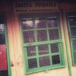 Mobilna fotografia – chatka Puchatka
