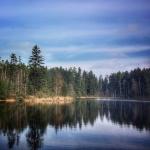Zalew na rzece Szum – fotografia mobilna