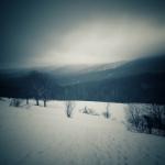 Zimowy tajemniczy Bieszczadzki krajobraz