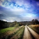 Polna droga, okolice Arłamowa
