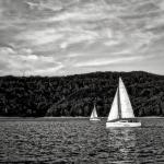 Żagle na wietrze | Sails in the wind