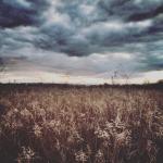 Mobilna fotografia – pochmurne niebo