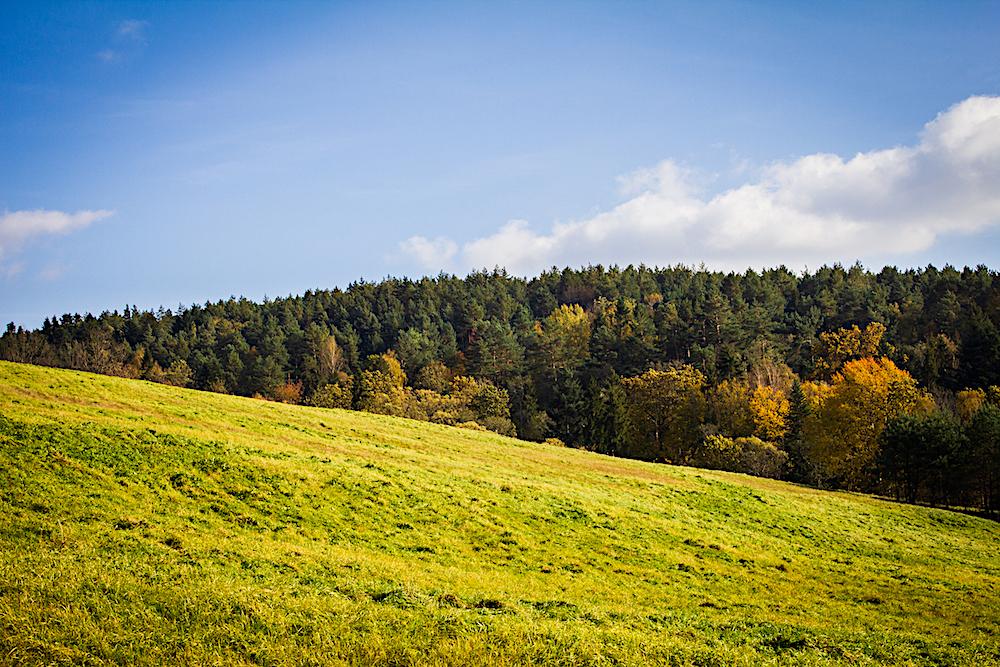 Bieszczady fotografia, Połoninki Arłamowskie, okolice Arłamowa
