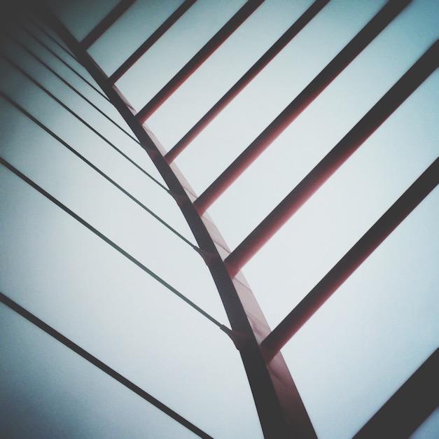 fotografia minimalizm szkielet