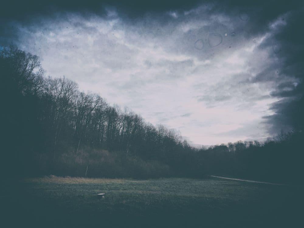las węgierka miejsce na ognisko